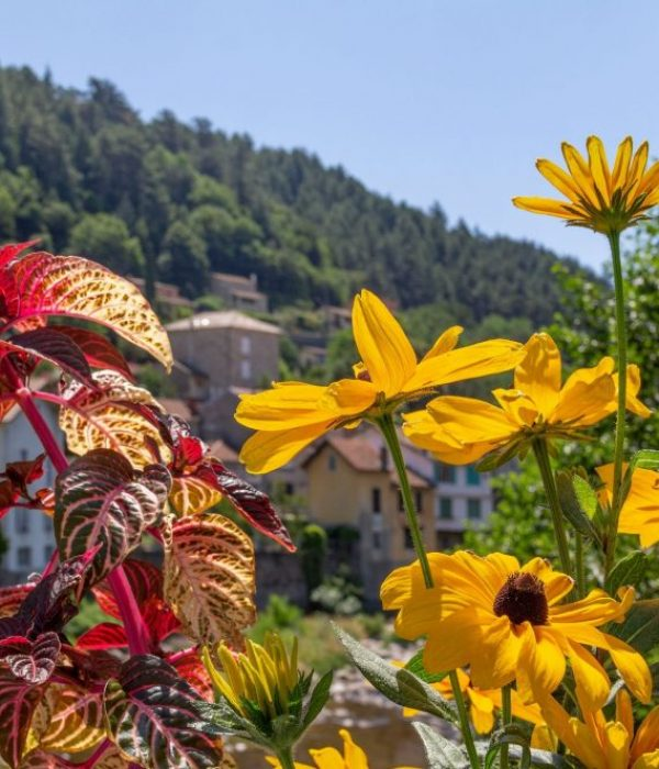 seminaire vert Savoie